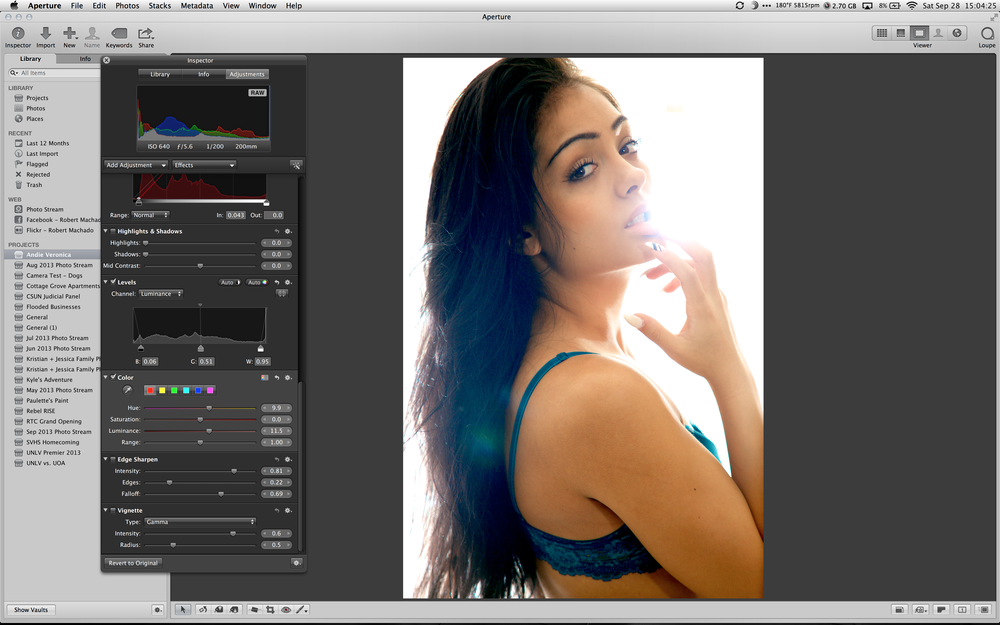Provide a more natural skin tone by adjusting the Hue + Luminance parameters in the Color adjustment.