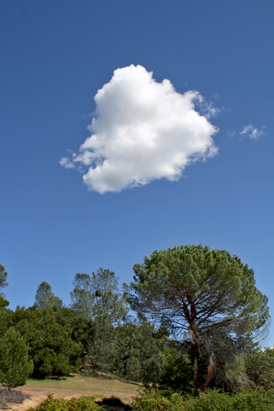 clouds1(1).jpg