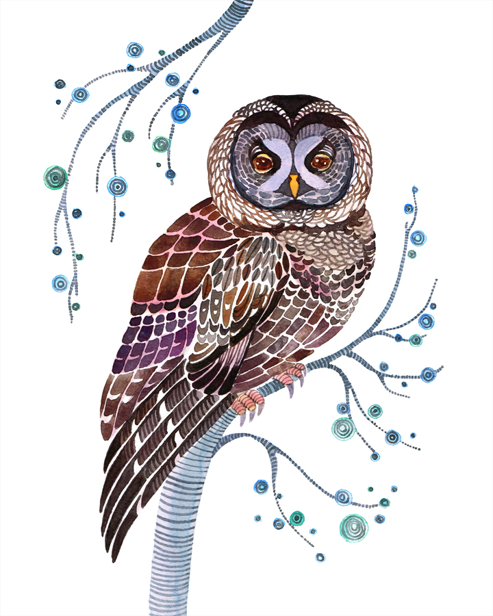 Lacy Owl