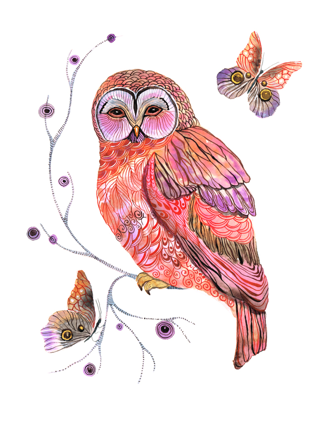 Owl and butterflies