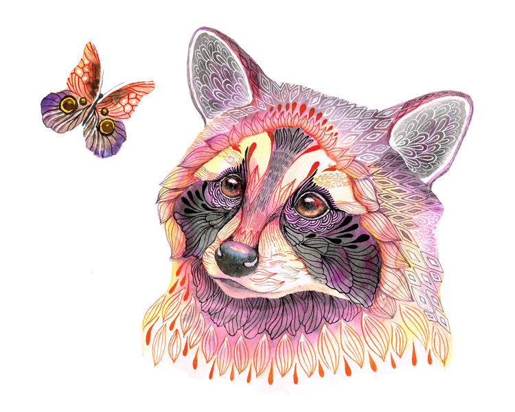 Raccoon and butterfly