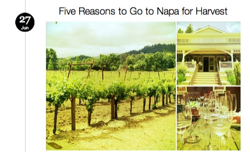 Five Reasons to go to Napa for Harvest