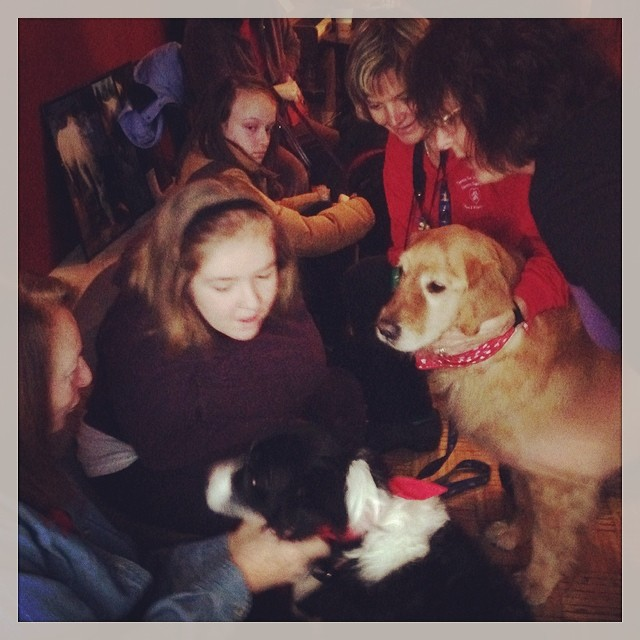 Dougie and Lexi at Paws for a Cause 🐾 #therapydogs #pettherapy #autism #ASD