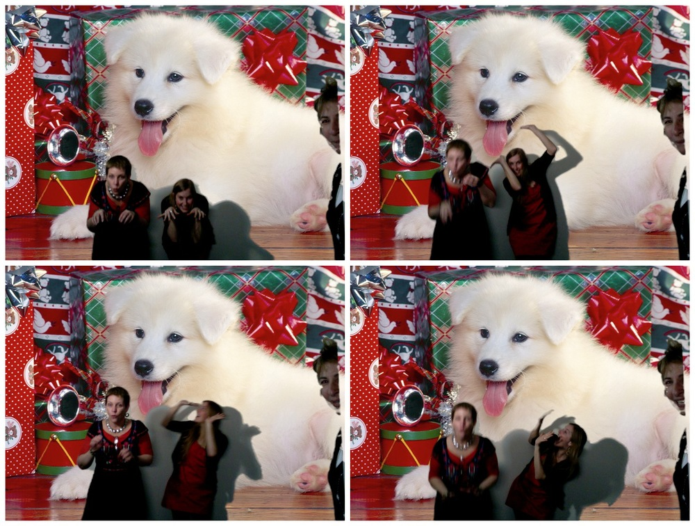 4upHarperXmas2011_Photobooth_022.jpg