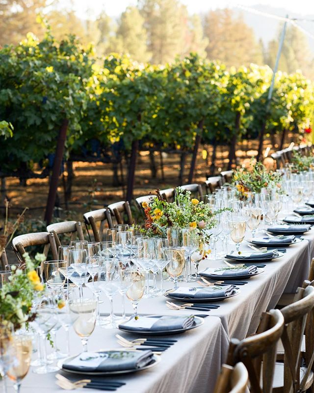 A gorgeous night at the annual Turnbull Harvest dinner last Saturday. The only word to describe it is magical. We were amongst kind, happy people with generous spirits, amazing wines and food. Thank you to @turnbullwines and @jessicalaskycatering for another beautiful, memorable night. I'm lucky to get to collaborate with these wonderful people year after to capture something special. ✨ Also, so many trips, travels and shoots all over the world, and none of it I've shared. 😑 If you watch stories you have seen where I have been. I'm feeling guilty about it, can you tell? And yet IG isn't always my highest priority. But I will share more here soon. I will. From Amersham and Palm Springs, Spetses and Hydra, Atlanta and London, and Crete and Oakville. But first, I need to catch a plane to Orlando. 🤞🏻 Seriously though, head over to @kmbeventfotografie to see some of the food event photography that has me circling the globe, or rather, criss-crossing it. There are some significant projects over there that have my heart and soul, like @foodbytesbyrabobank and @miseconference. I hope you'll check them out, too. The imagery might be less sexy than a Cretan sunset, but these organizations are changing the world for the better (really) and I'm honored to be a part of it. ✌🏻