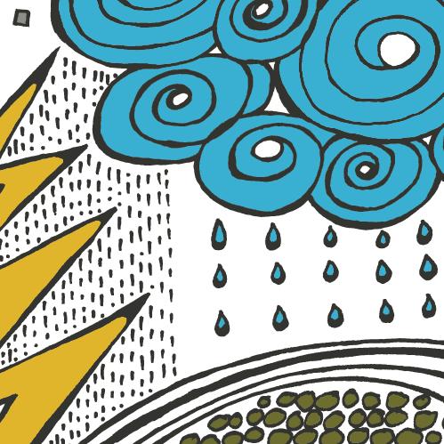 rain or shine crop.png
