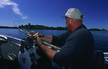 Photo: BassFan  The authors note that if you have a flipping stick that's perfect for big-bait fishing, then you have a lousy flipping stick.