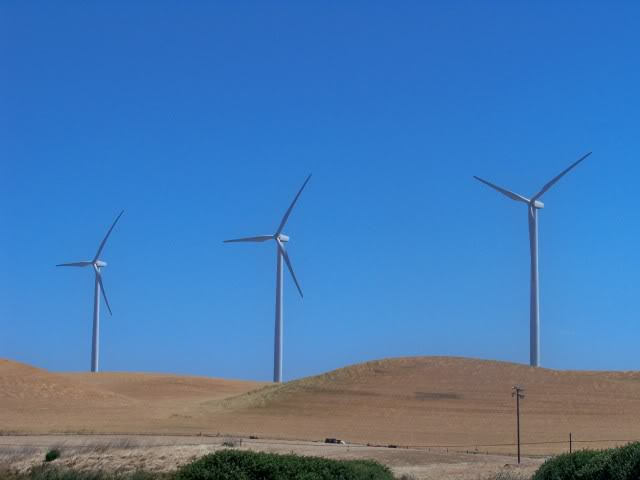 Wind turbines; the wind will blow strong at the Delta, but don't hide from it, it will provide opportunity