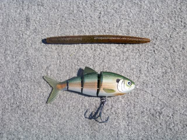 "Excellent combination; the 4"" BBZ-1, if the fish misses or is telling the blue gill to go away follow up with the senko and…"