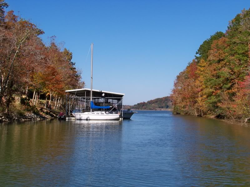 Docks on Pickwick