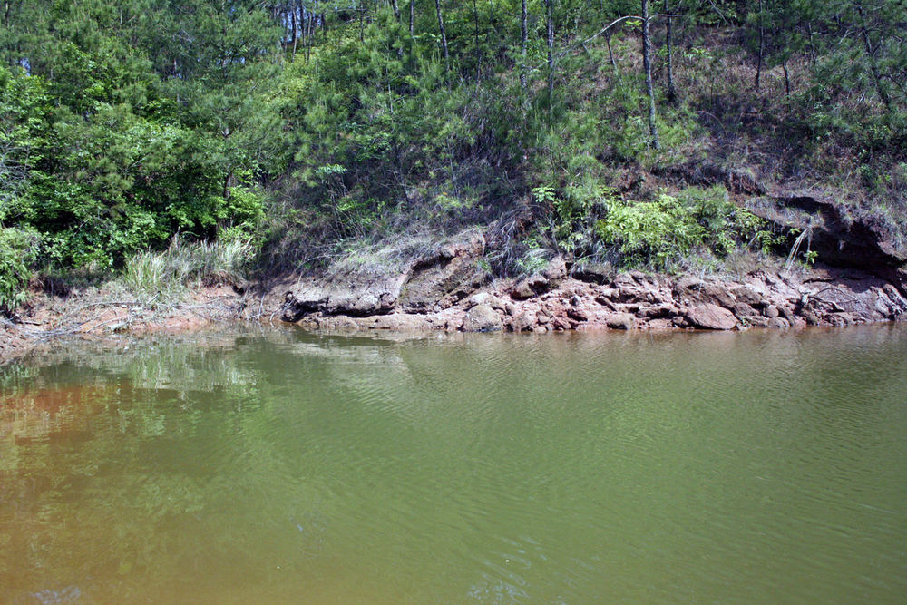 Pic. 3. A transitional area in a small pocket with deep water to the right and shallow water to the left.