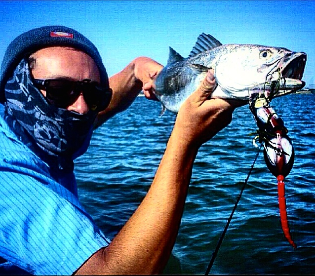 Photo Credit Stan Kaplun: Corvina