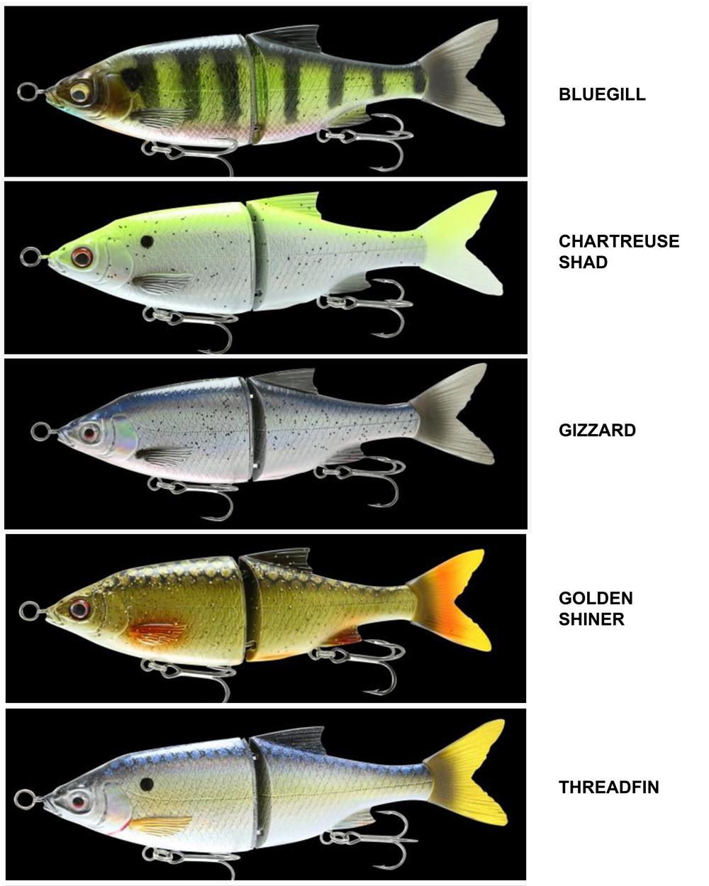 3D SHINE GLIDE - Color Chart
