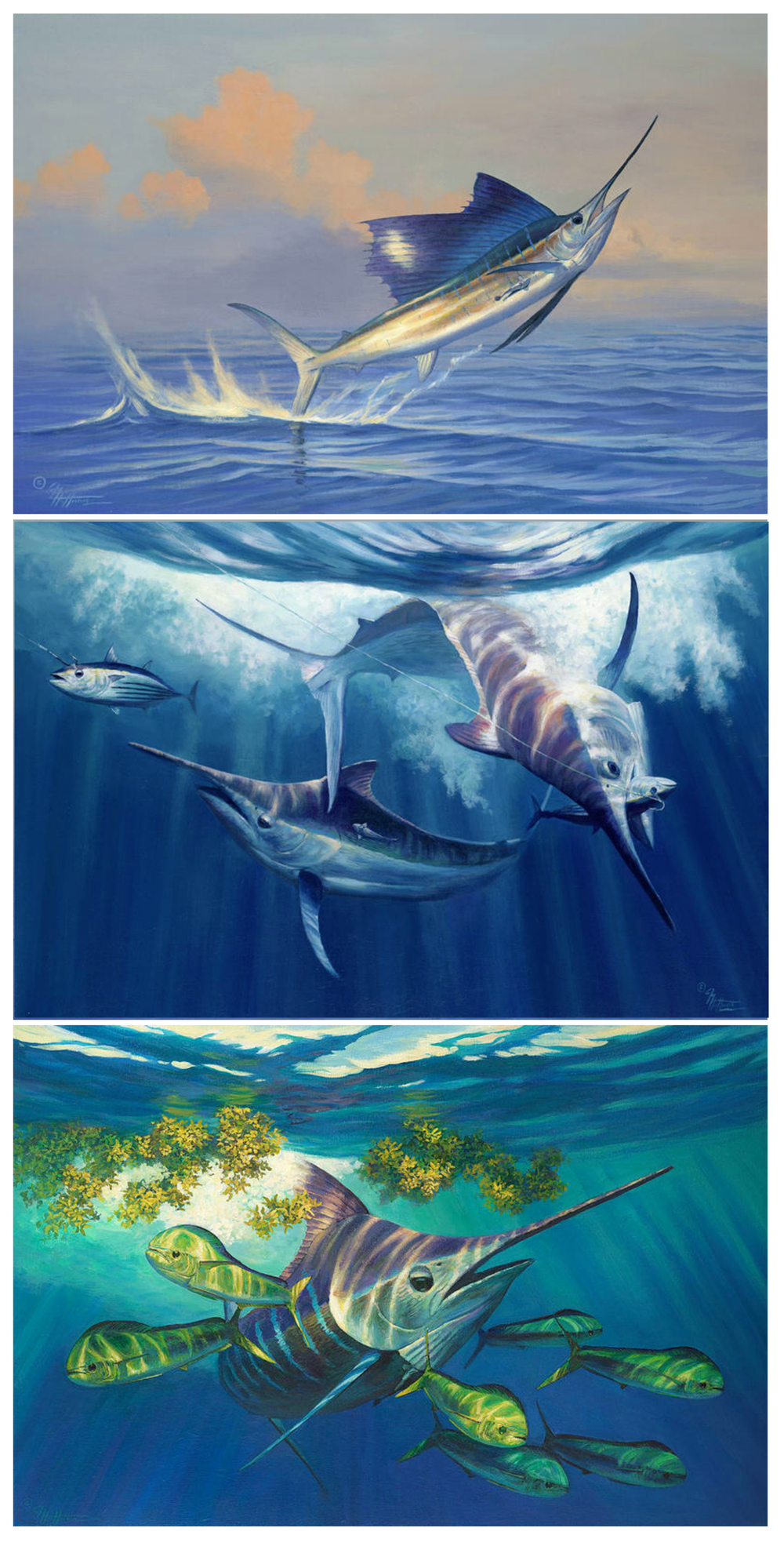 "Top to bottom; ""Free Jumper"", ""Hannibal Bank"" – Black Marlin Off Panama, ""Man In The Blue Suit"""