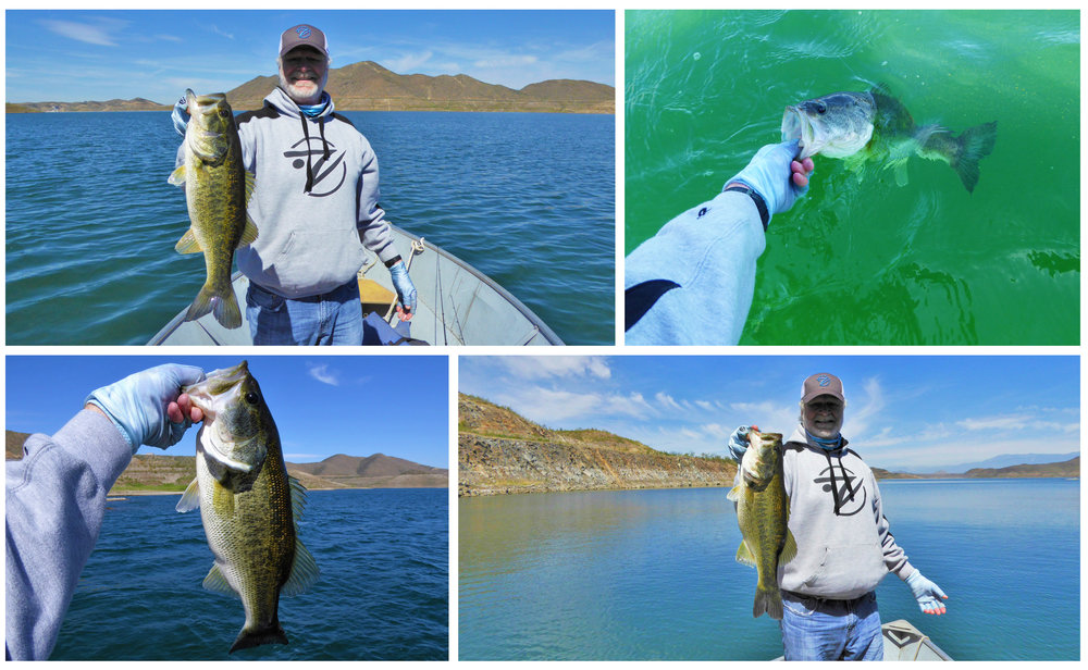 Excellent bass action from a rental boat at Diamond Valley Lake, Hemet California.