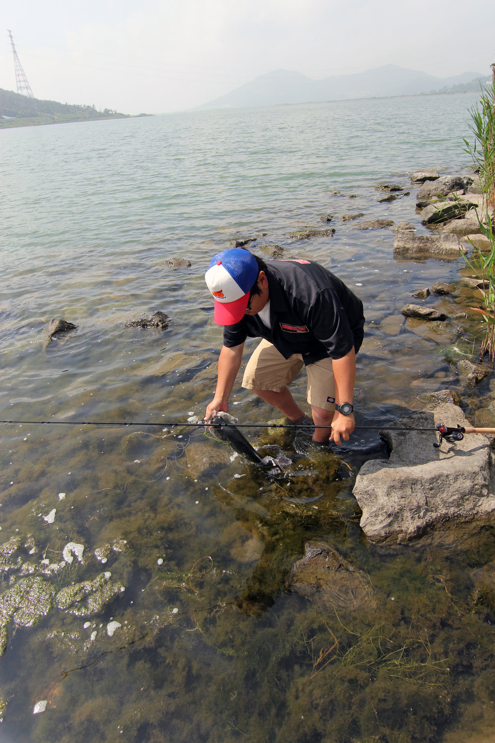 Pic. 8. Kang releases a bass on the rocky shoreline of Geumho Lake.