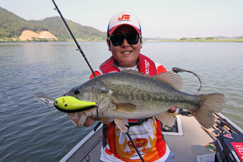 Pic. 10.  We got several schools of largemouth fired up and caught some quality fish on deep crankbaits.