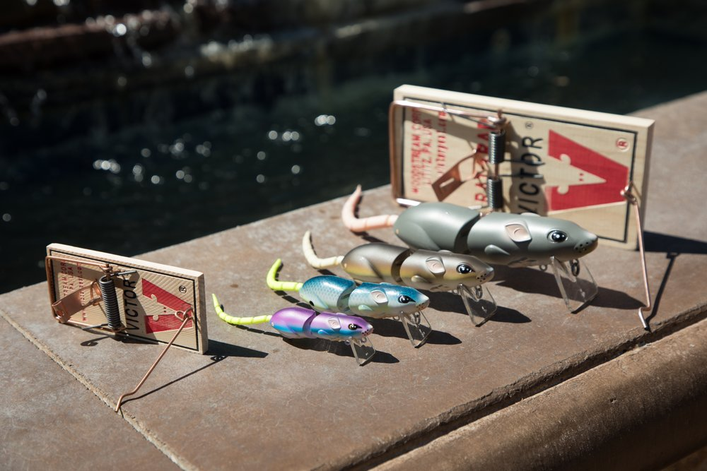 Above is the full line of SPRO BBZ-1 Rat/Mouse baits. For size comparison you can see a Victor mouse and rat trap in the picture.