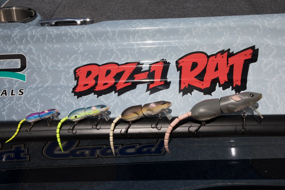 BBZ Rats are where its at!