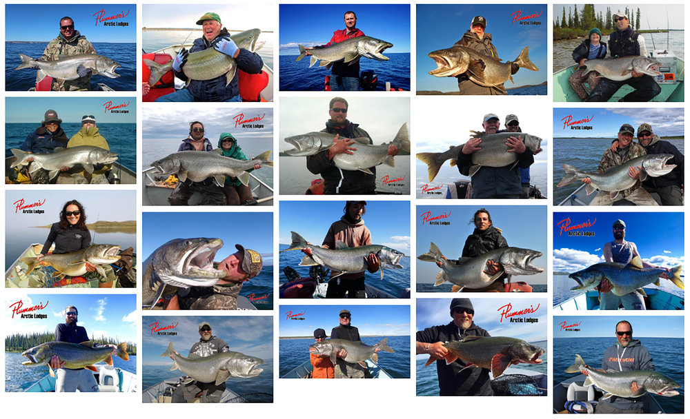 Trophy Lake Trout check me out, the author, top row column four left to right!