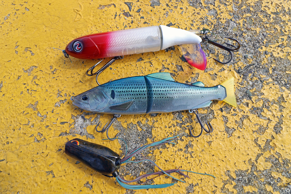 Pic. 14.  The top baits of the day are the Whopper Plopper 190, DUO Realis Onimasu (floating) and SPRO Bronzeye Pop Frog 60.