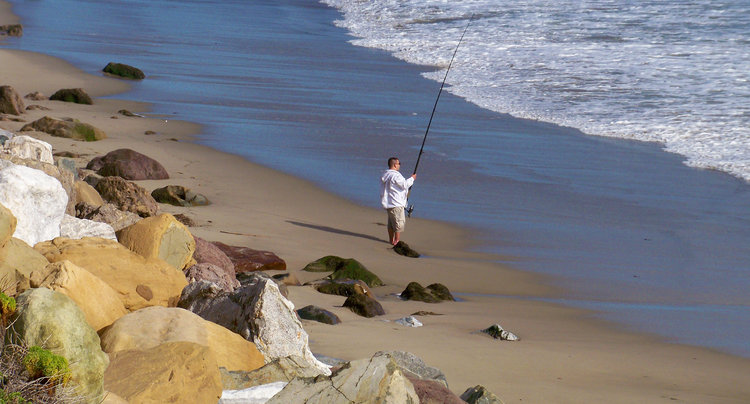 New 12-Month Fishing License for California Anglers — TheBBZ com