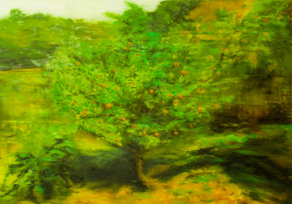Lemon Tree in Colombia, Oil on canvas, 55 x 78in.JPG