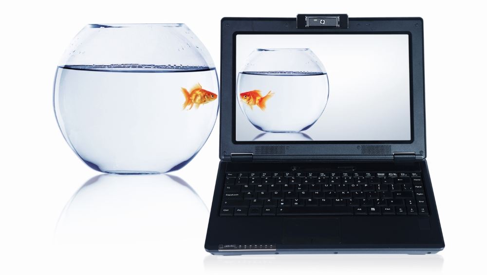Fishbowl and computer.jpg