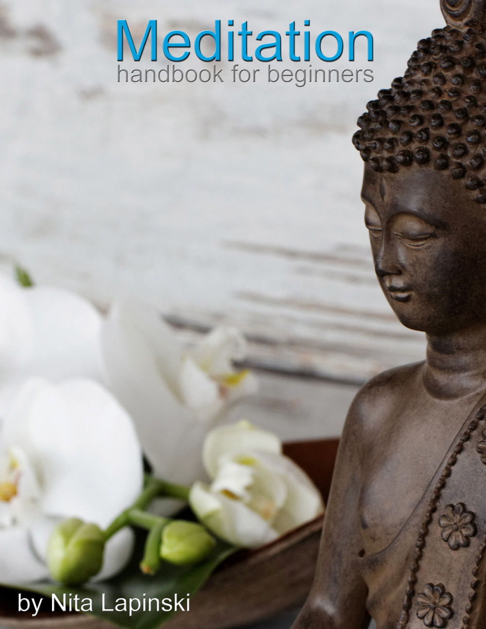 Meditation Handbook for Beginners by Nita Lapinski