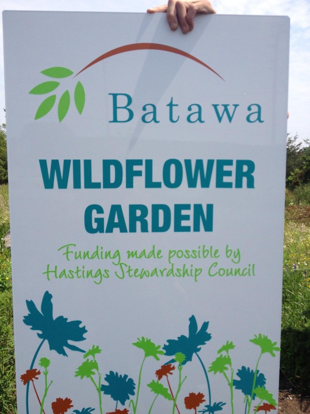 BatawaWildFlowerGarden.JPG