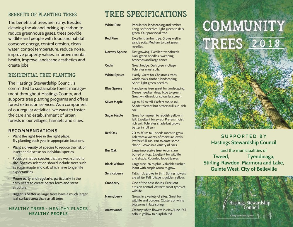 HSC Brochure Community Tree 2018_r5.jpg