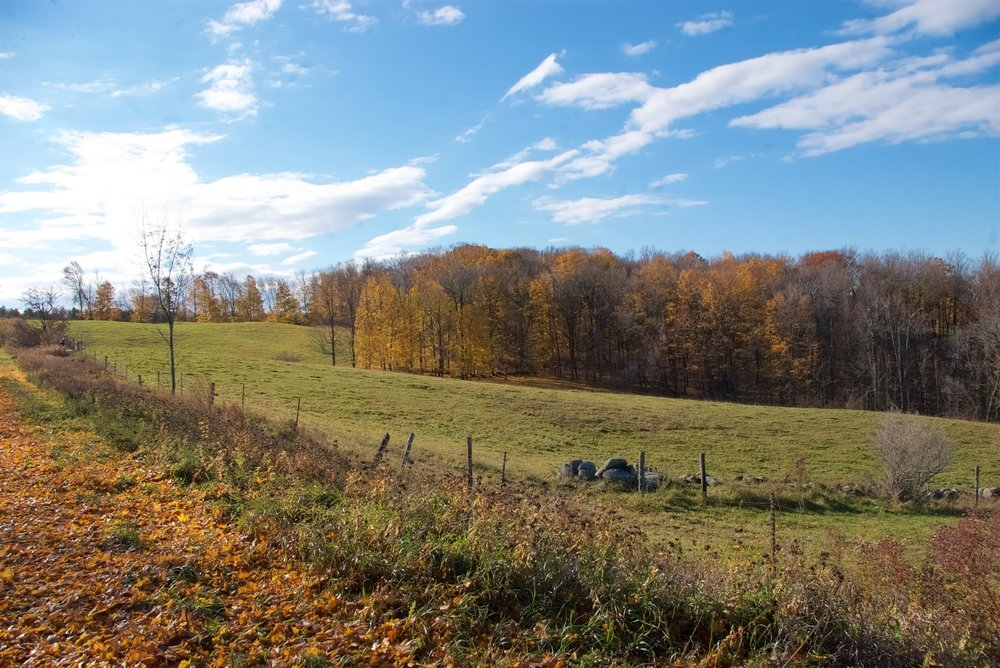 Trenton Woodlot Conference - Farms and Forests - Living on the Edge