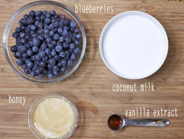Roasted Blueberry Coconut Milk Ice Cream