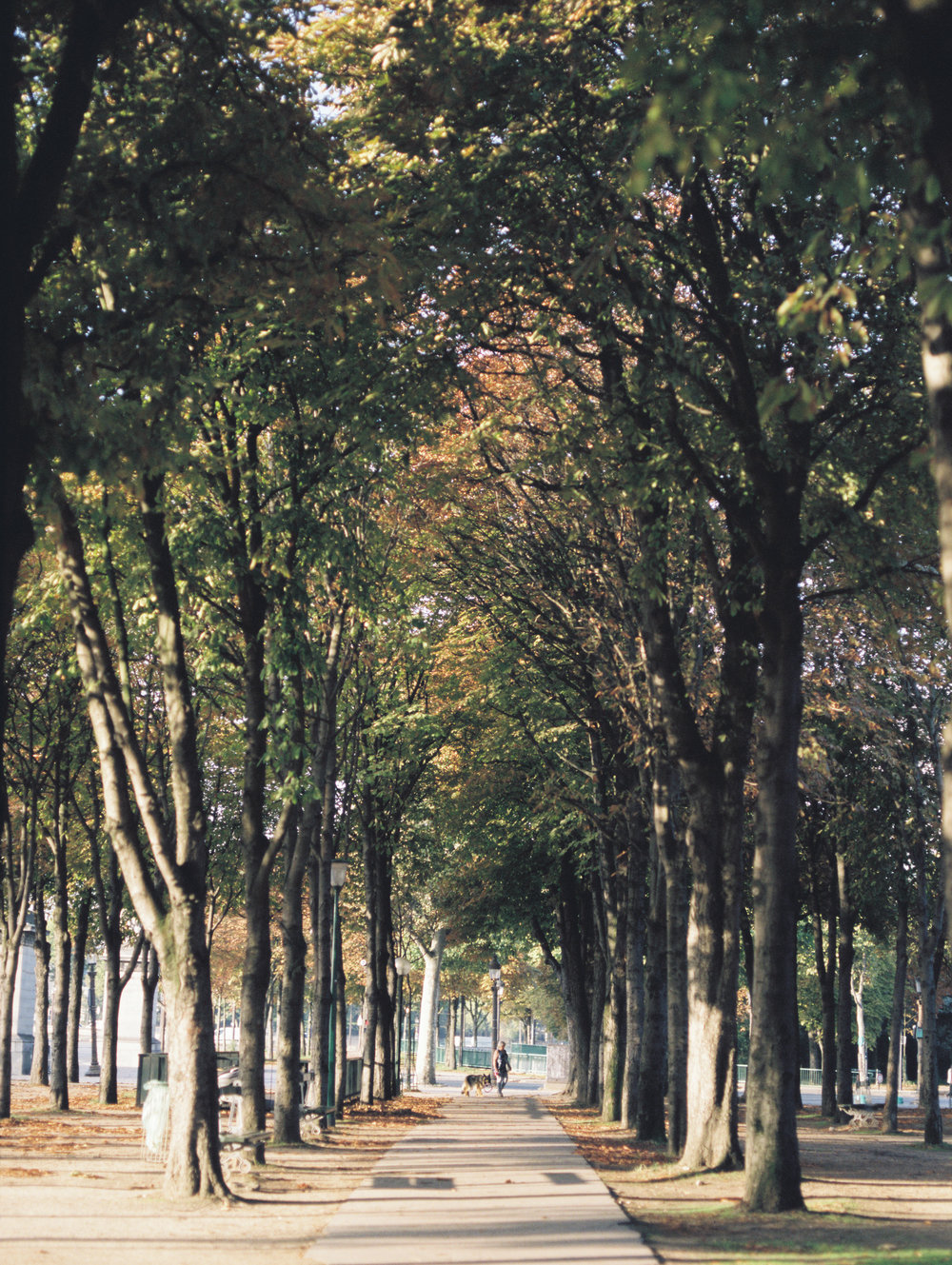 paris film photograph 2.jpg