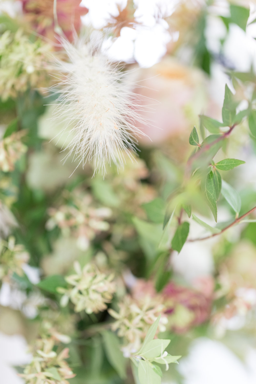 lumi blush styled shoot-1037.jpg