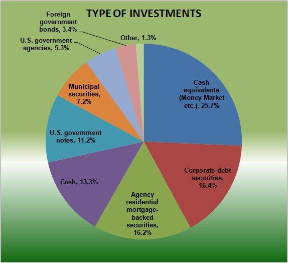 Google Investments 2010.jpg