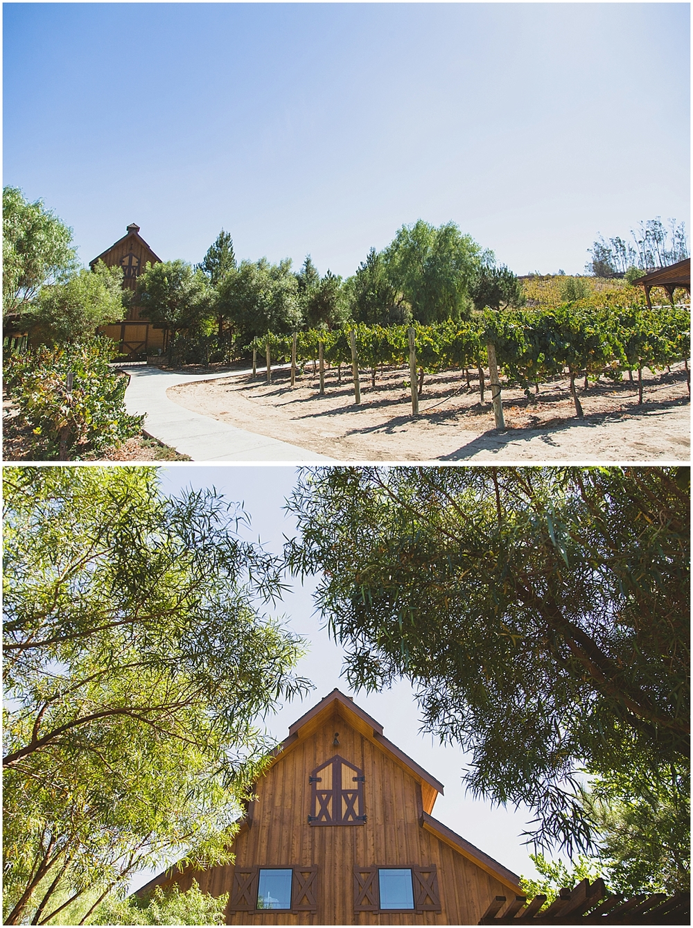 Blissfully Illuminated_Long Shadow Ranch Wedding_0114.jpg