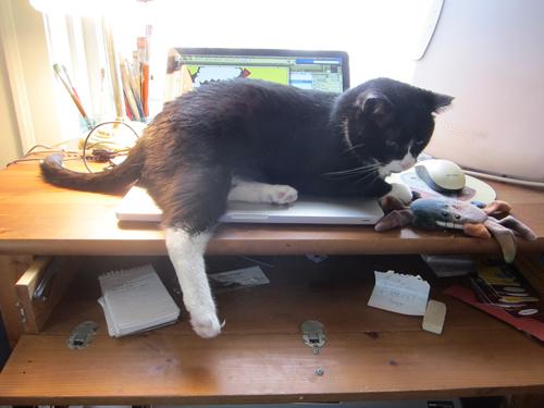 steinway_laptop_again