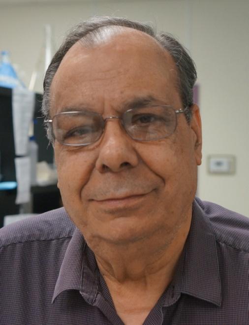Hossein A. Ghanbari, Ph.D.