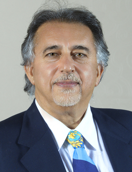 Mehdi Hatamian, Ph.D.