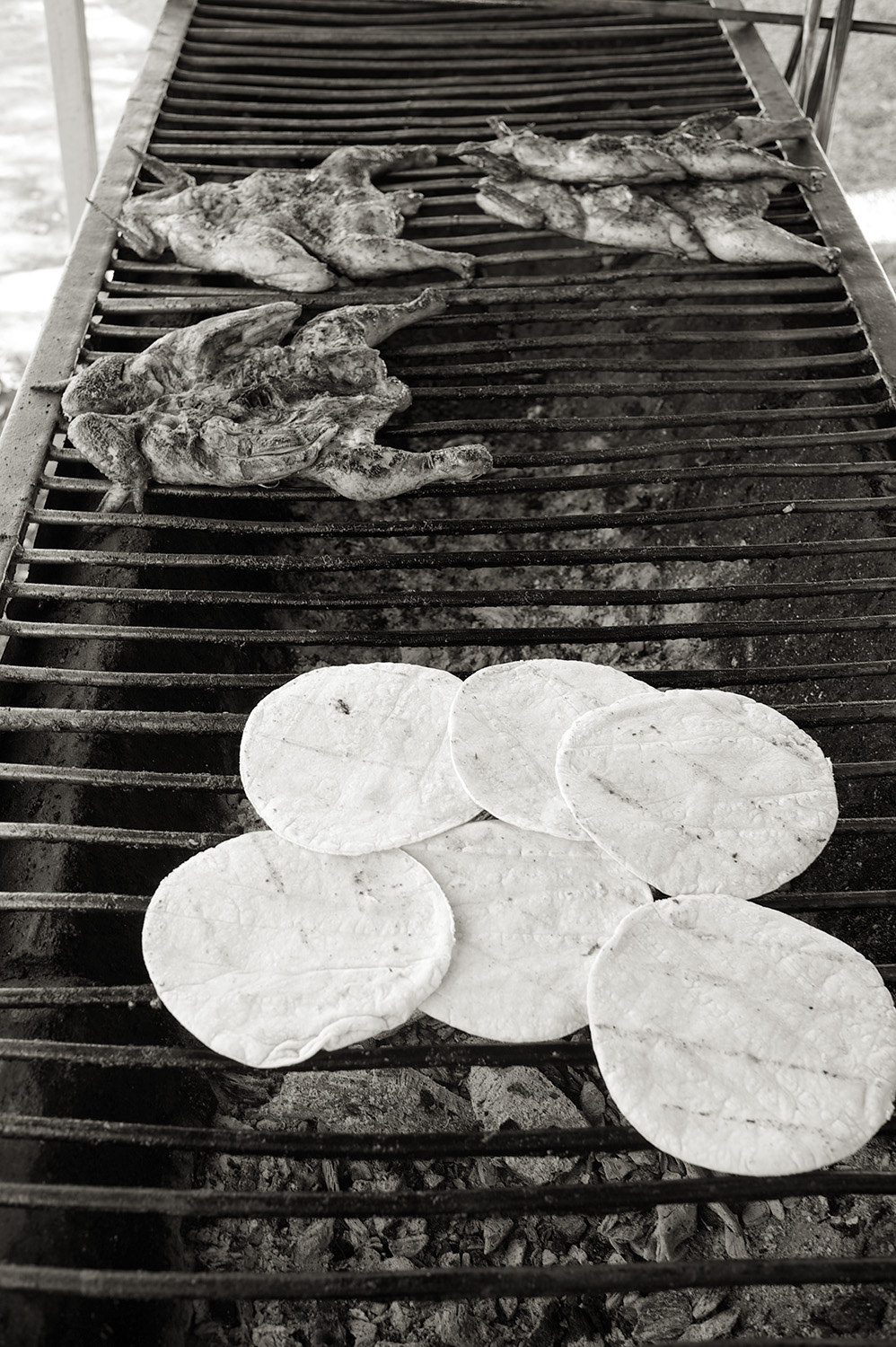Street Food. Chicken & Corn Tortillas. Perfection.