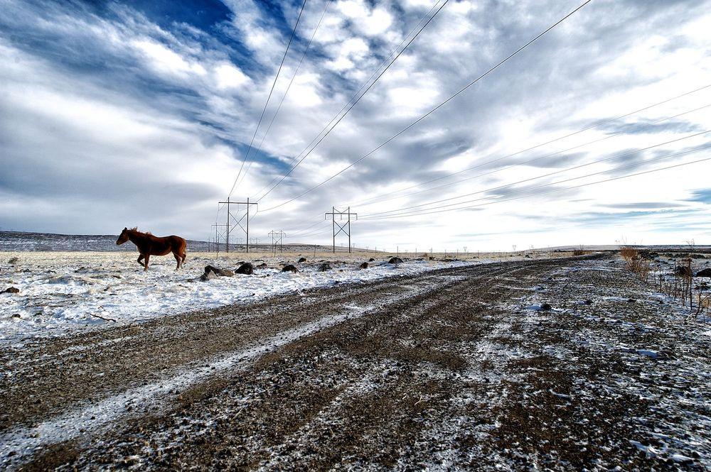 Open Range. Idaho