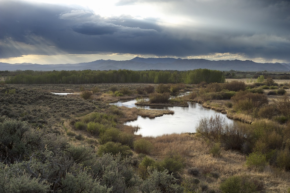 Sunrays & Silver Creek Preserve, Idaho.