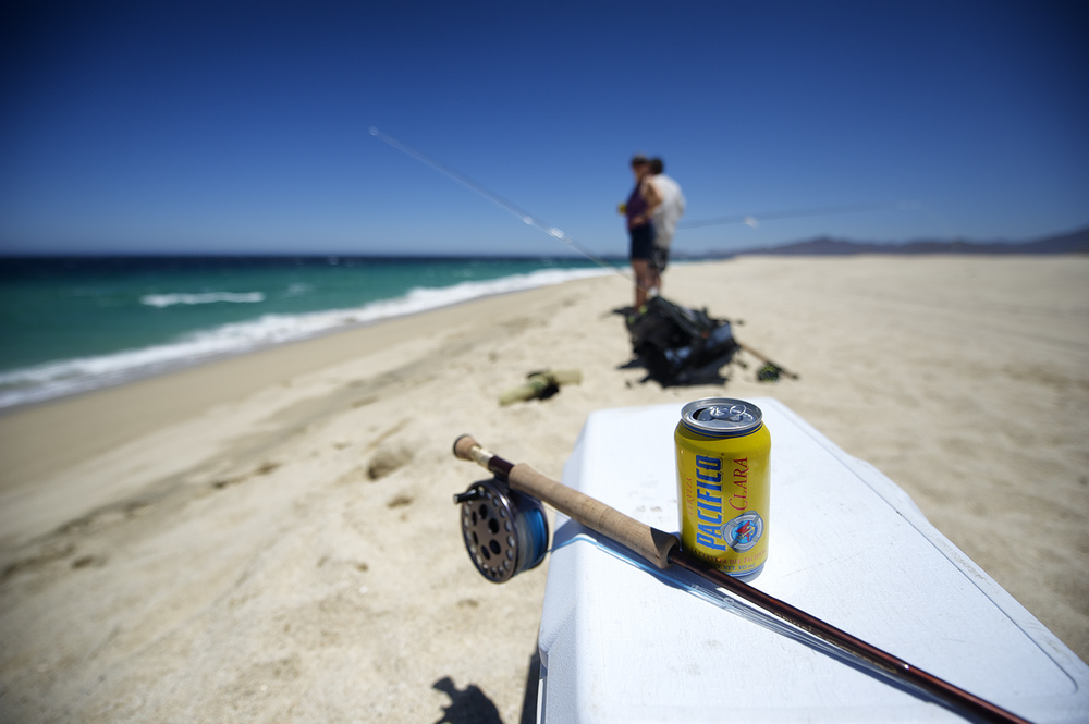 beach and pacifico.jpg