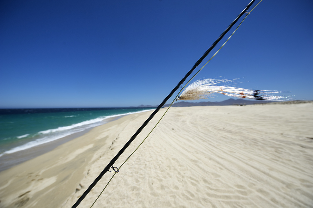 fly rod and beach baja.jpg