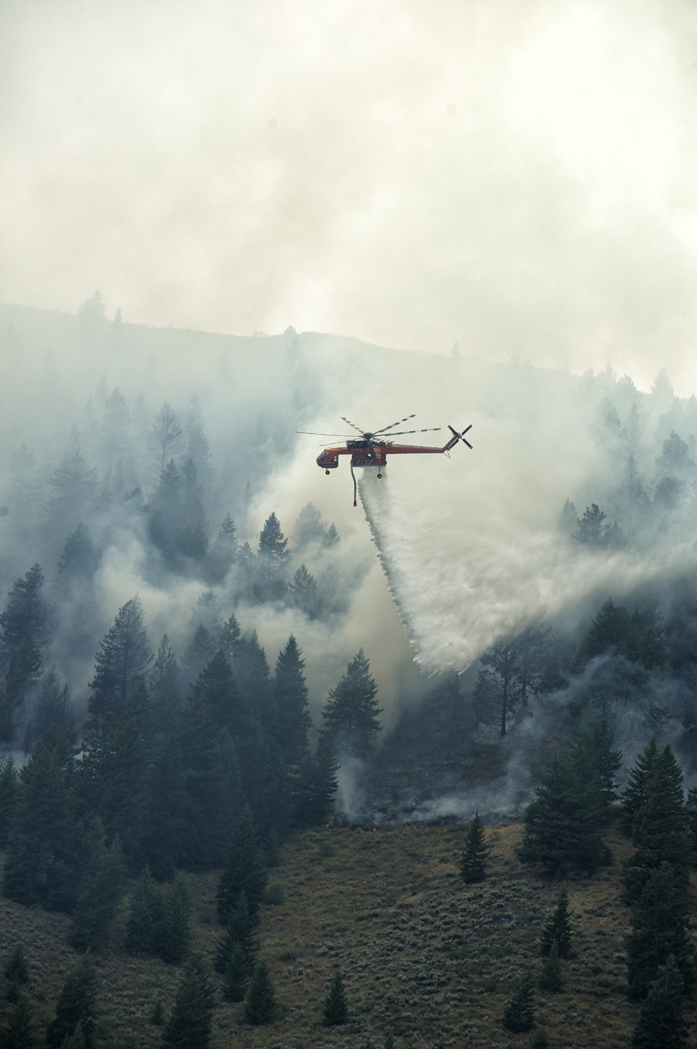 A helicopter unleashes on Carbonate Mountain. Hailey, Idaho.