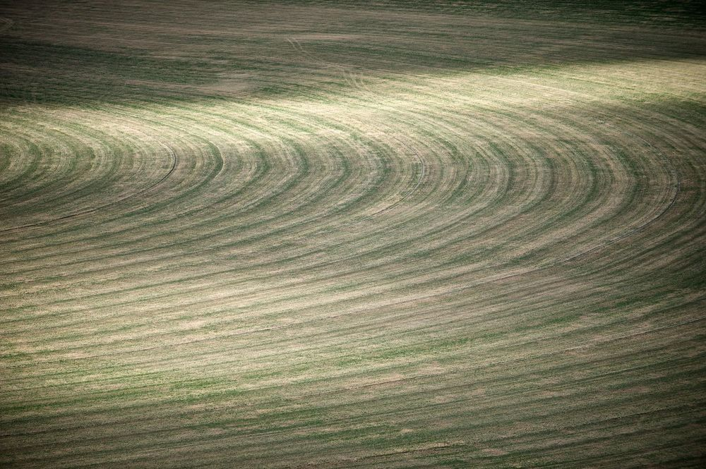 Field Curves. Picabo, Idaho