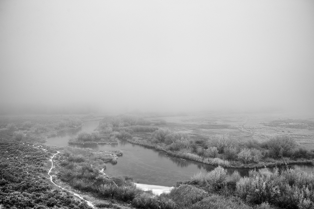 Silver Creek Preserve & Fog. December.