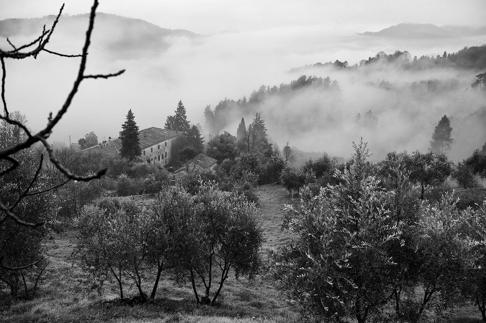 lucca house view bw II.jpg
