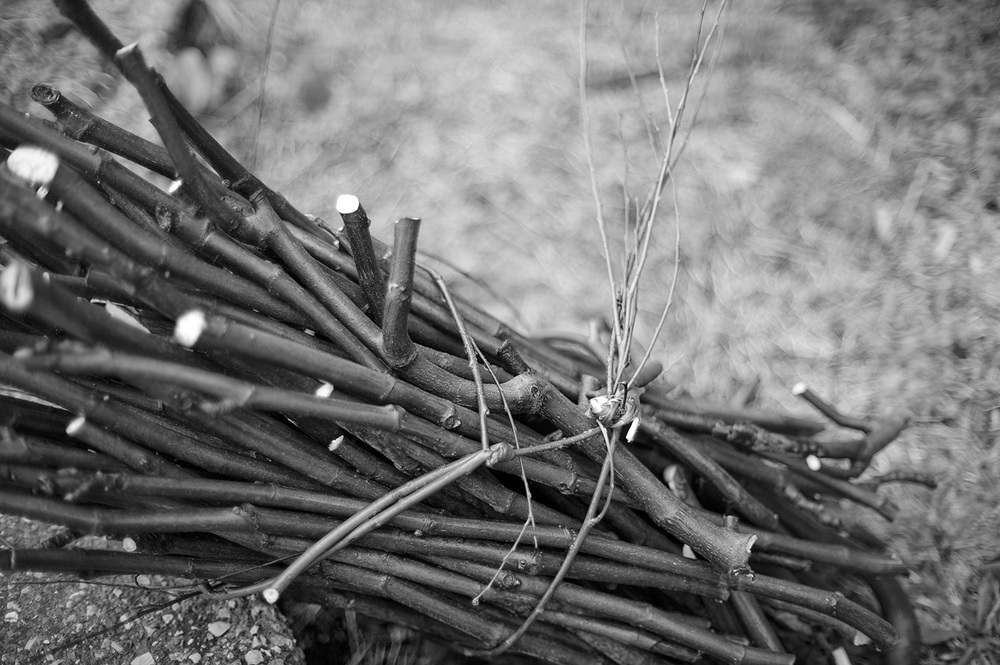 Bunch of Sticks